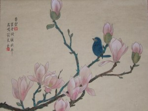 Magnolia_blue_bird